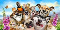 30x60 Large Selfie Dog Cat Hamster Parrot Cruise Vacation Po